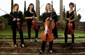 Amicus Strings perform at wedding events and in concert