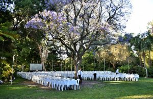 adelaide zoo weddings & events with Amicus Strings